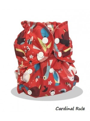 AppleCheeks Envelope Cover/Bundle - One-Size (2.7-16kg)