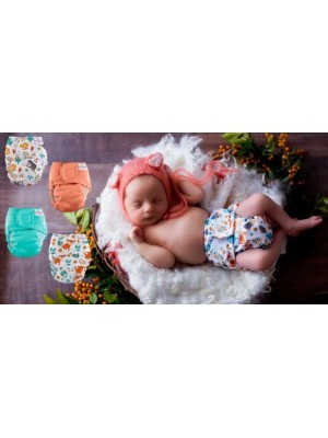 Bubblebubs Newborn AIO 4 Pack - Roxy & Chip